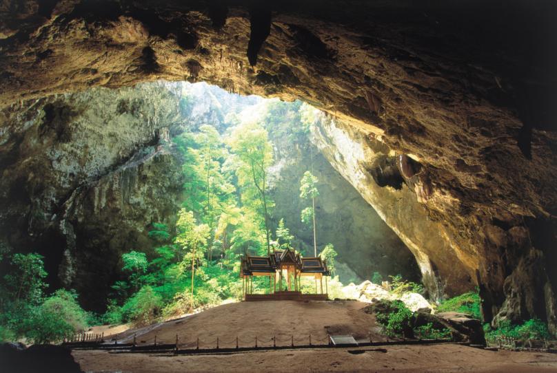 タイの熱帯樹林